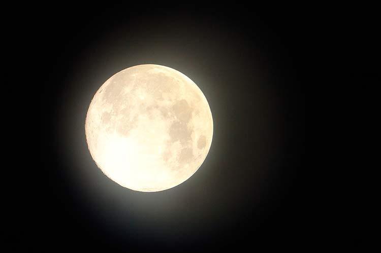 Лунный посевной календарь на июнь 2019 года: что делать на огороде в начале лета