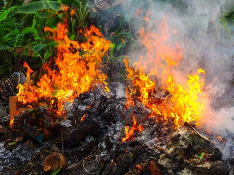 Как запрещено жечь ветки: сжигание мусора на даче в 2019 году