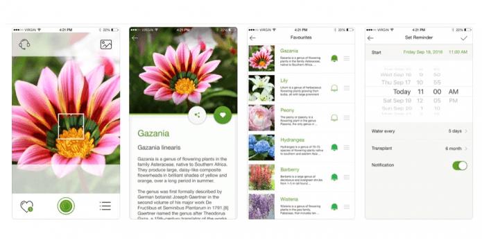 Приложение «Уход За Растениями»
