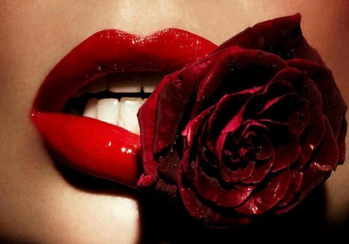 Алые губы и роза