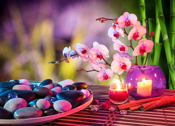 Опасное значение орхидеи: кому можно и нельзя дарить цветок?