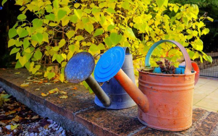 Осенние работы садовода
