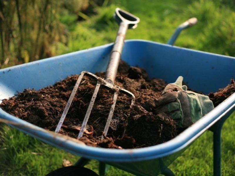 Чем удобрить грядку осенью, чтобы в следующем году получить рекордный урожай