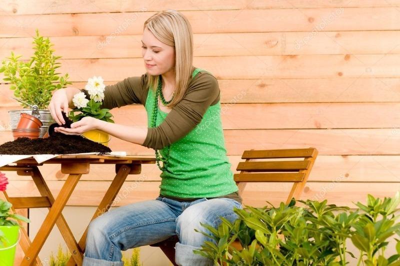 5 способов обработать почву для рассады перед посадкой