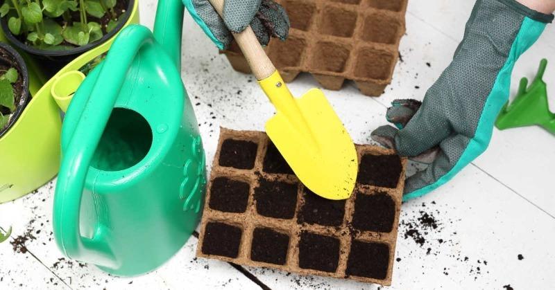 4 способа обработать почву, чтобы рассада росла крепкой и здоровой
