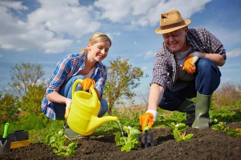 Народные приметы огородников: когда не стоит сажать и сеять