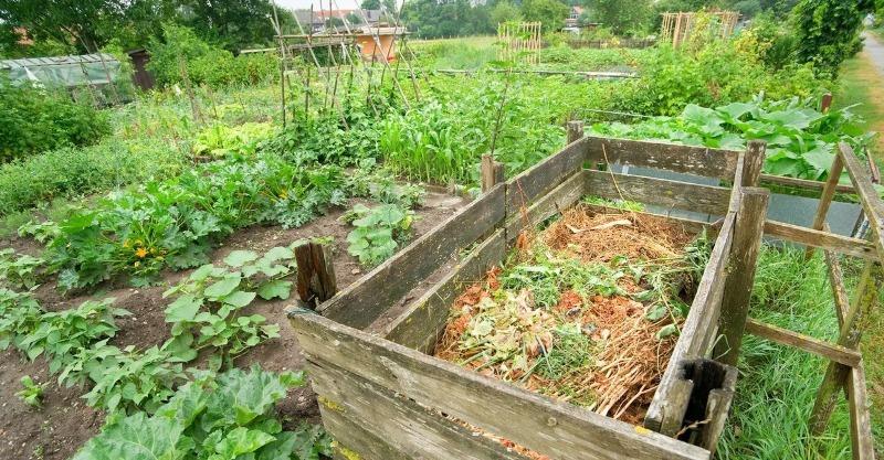 5 ошибок во время заготовки компоста, которые портят удобрение