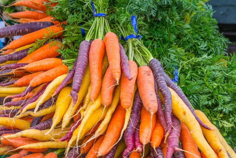 Вкусная радуга: 9 разноцветных сортов моркови