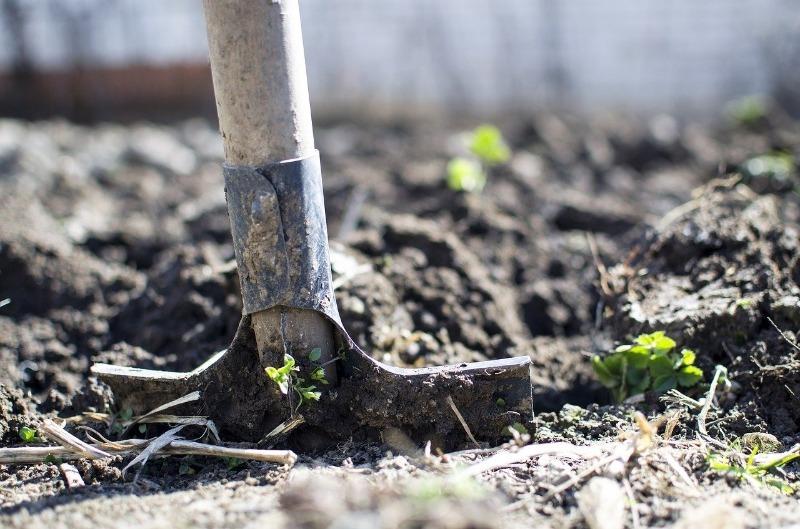 Готовим землю к зимовке: что важно сделать после уборки урожая