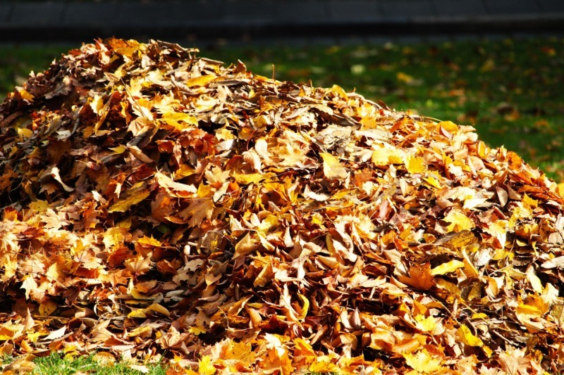 Австралийский метод подготовки компоста всего за пару недель