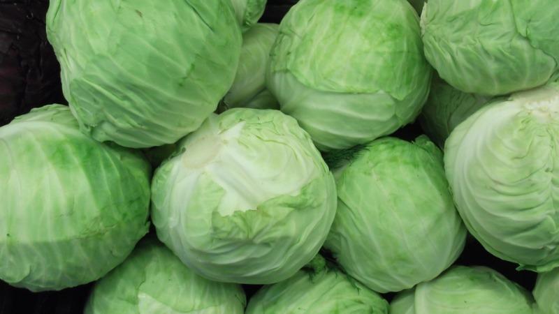 Ревизия хранящихся в подвале и погребе овощей: на что важно обращать внимание