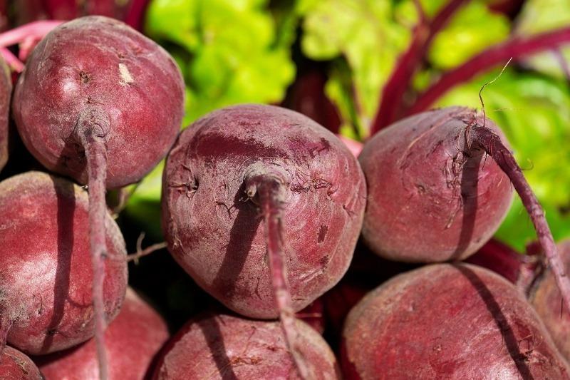 5 растений, которые сильно обедняют почву – поле сбора урожая земля долго «приходит в себя»