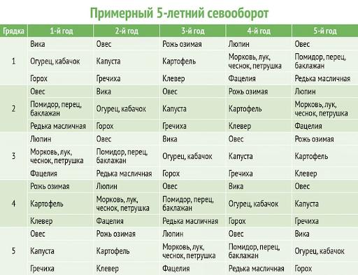 Ориентировочный план севооборота на период в пять лет с использованием сидеральных культур